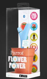 parrot-179x300